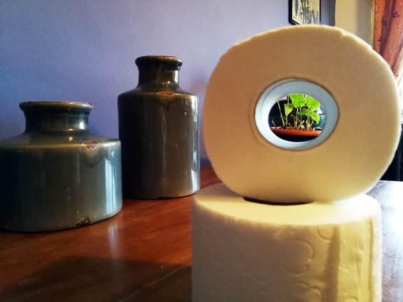 carta igienica soffice e naturale